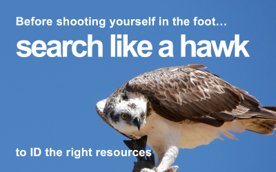 Search Like a Hawk